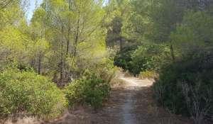 Verkauf Grundstück Santa Ponsa