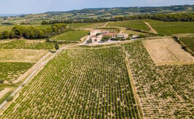 Verkauf Weingut RASTEAU