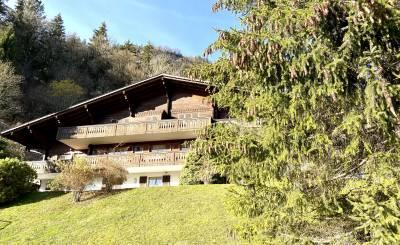 Verkauf Wohnung Château-d'Oex