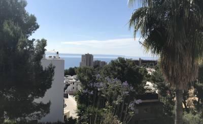 Vermietung Wohnung Cas Català